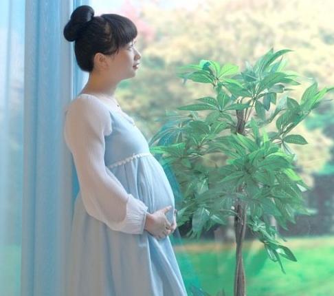想在国内做试管婴儿吗?这些适应症你了解了吗?