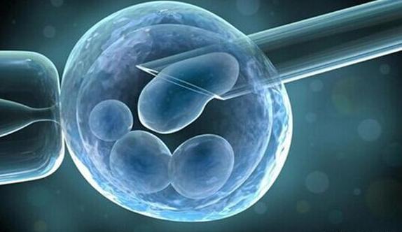 试管婴儿产生的全过程,试管婴儿可不是在试管里面长大的