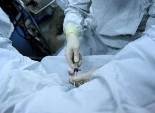 试管婴儿时女性取卵过程详解,看完心疼女人一万遍!
