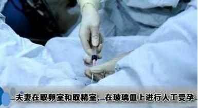 客户亲诉赴泰试管婴儿全过程,女人的痛谁能懂?