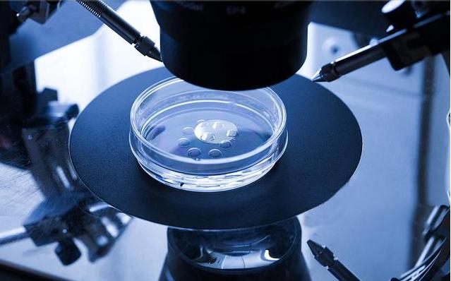 做试管婴儿囊胚培养,详解都有哪些优势与风险