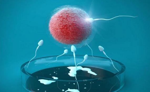 揭秘:什么是试管婴儿?